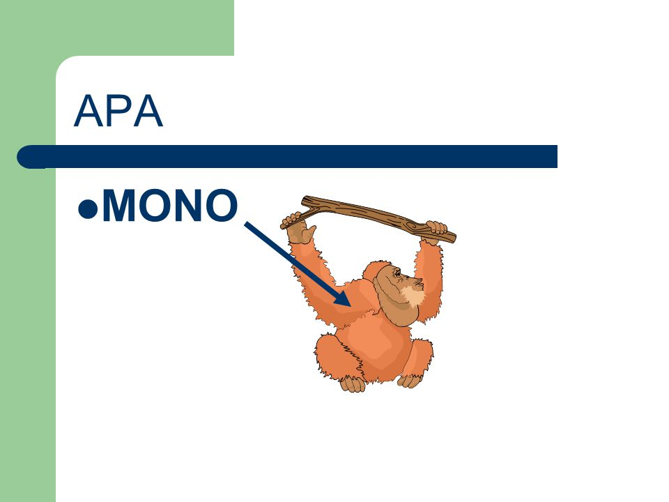 APA MONO