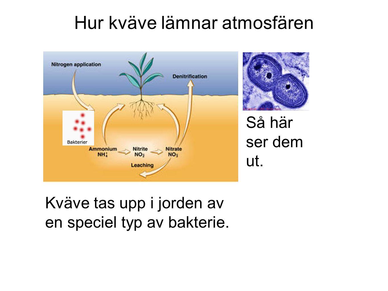 Hur kväve lämnar atmosfären