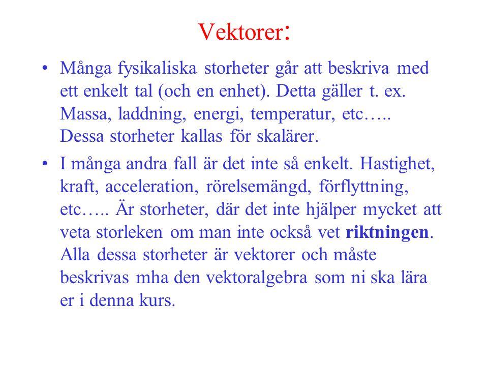 Vektorer: