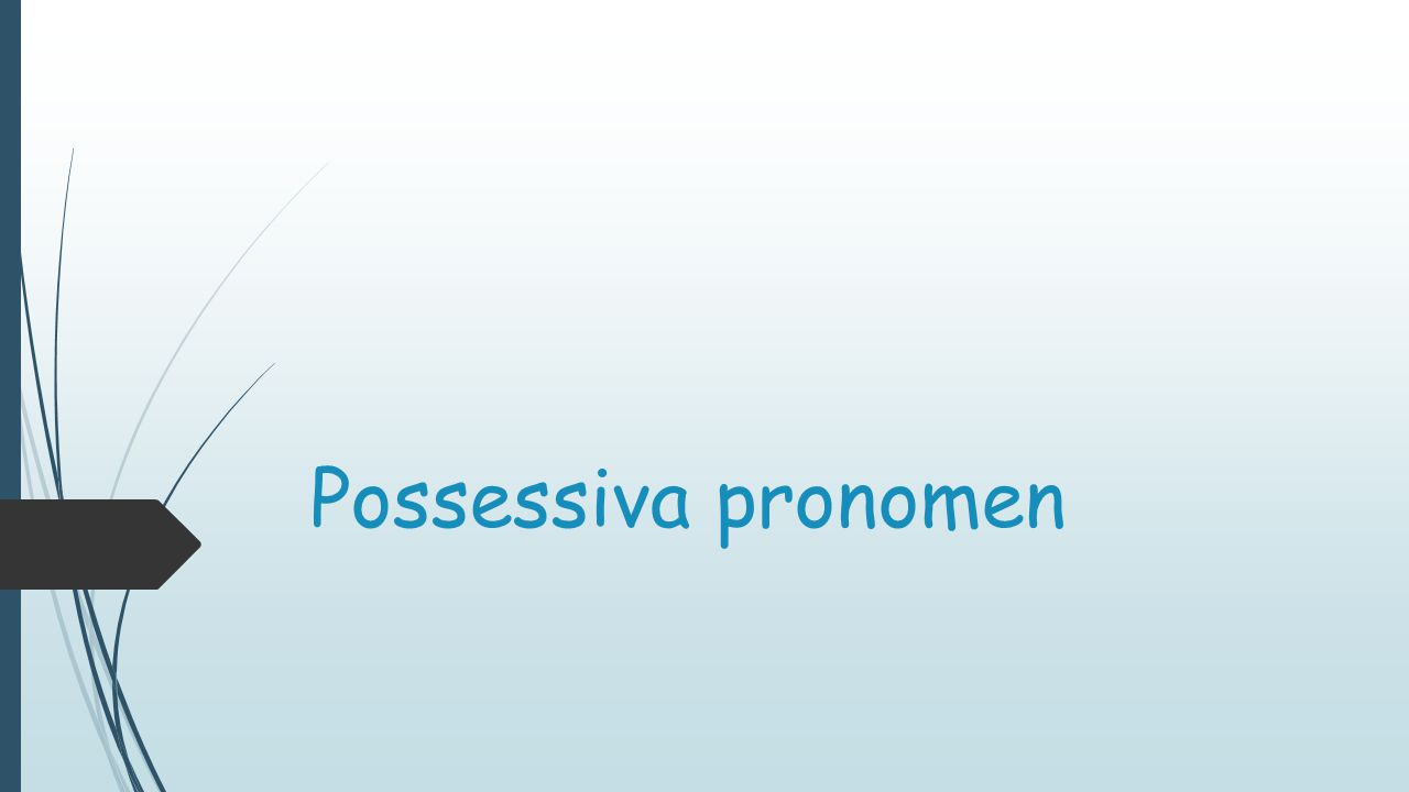 Possessiva pronomen