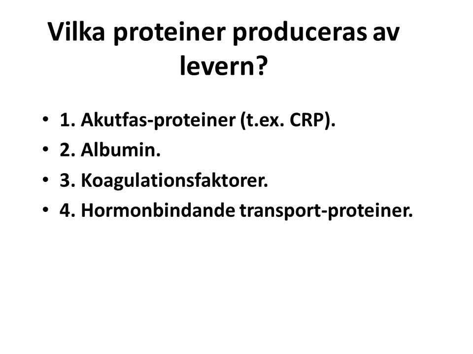 Vilka proteiner produceras av levern