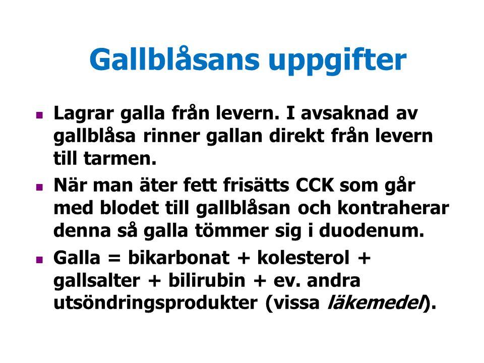 Gallblåsans uppgifter