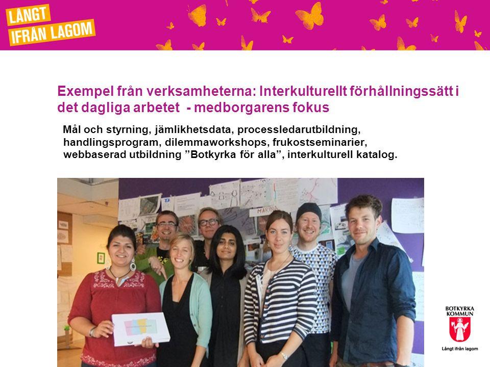 Exempel från verksamheterna: Interkulturellt förhållningssätt i det dagliga arbetet - medborgarens fokus