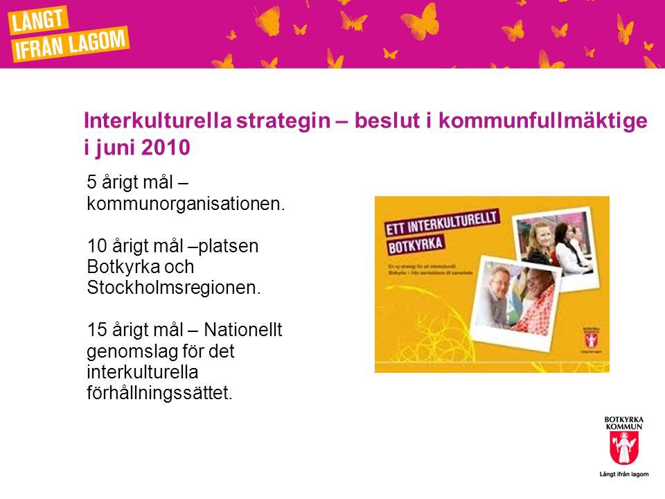 Interkulturella strategin – beslut i kommunfullmäktige i juni 2010
