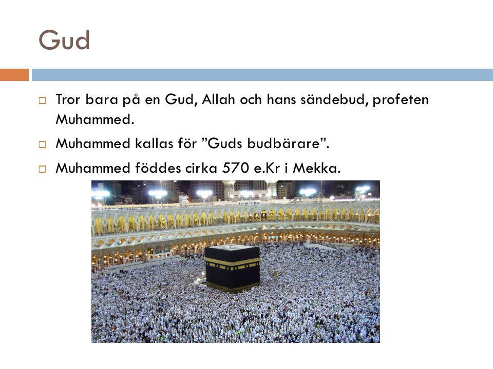 Gud Tror bara på en Gud, Allah och hans sändebud, profeten Muhammed.
