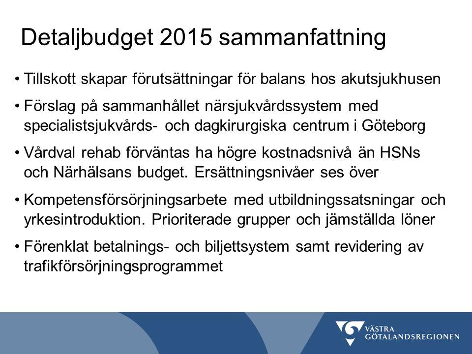Detaljbudget 2015 sammanfattning
