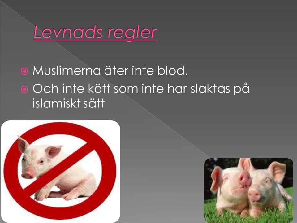 Levnads regler Muslimerna äter inte blod.