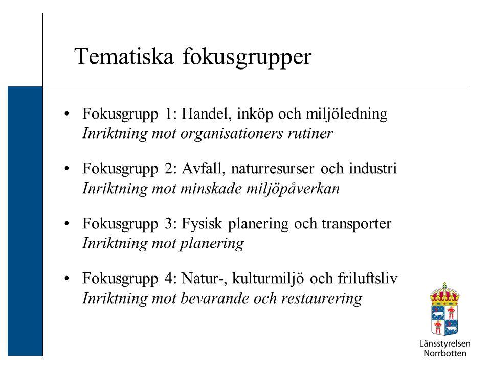 Tematiska fokusgrupper