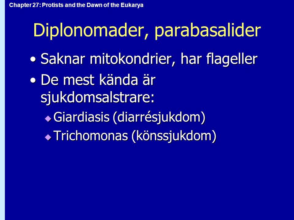 Diplonomader, parabasalider