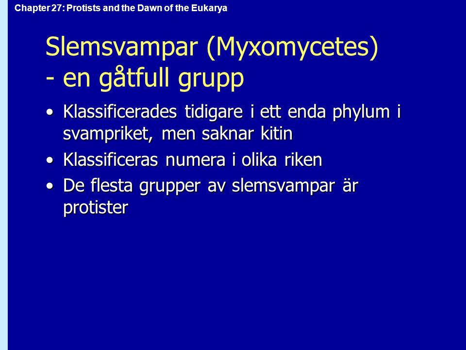 Slemsvampar (Myxomycetes) - en gåtfull grupp