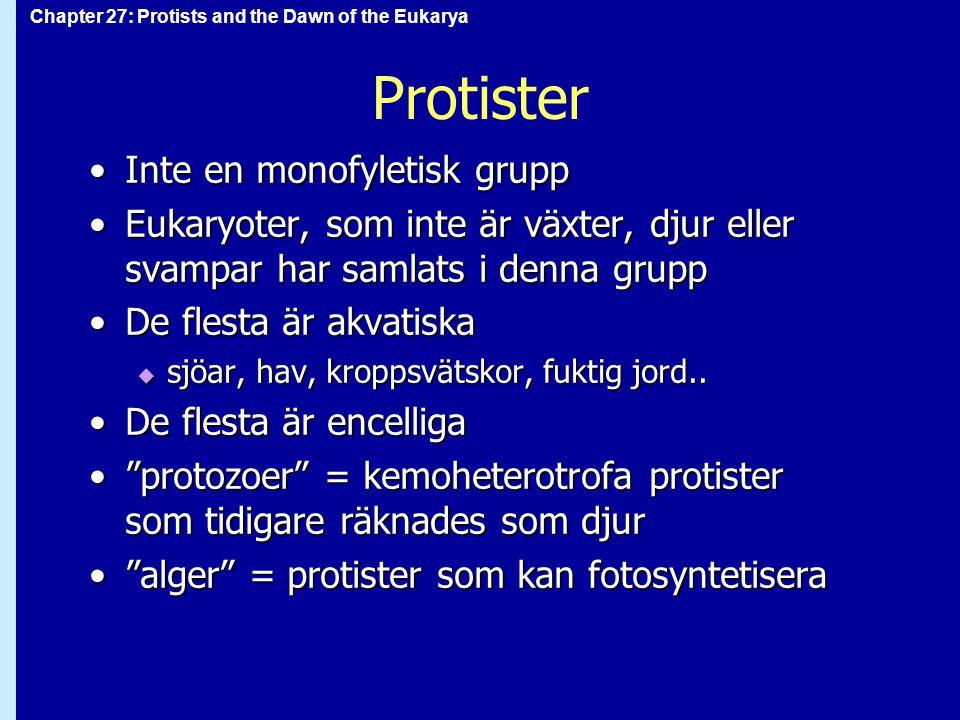 Protister Inte en monofyletisk grupp
