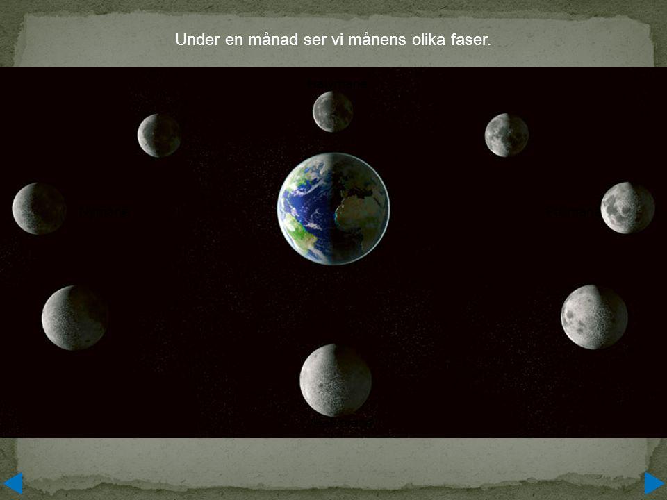 Under en månad ser vi månens olika faser.