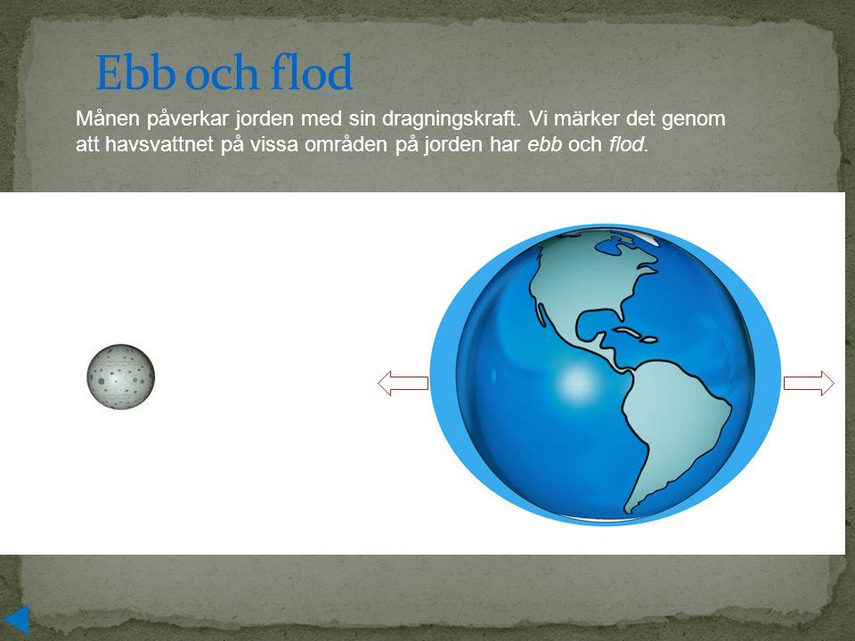 Ebb och flod Månen påverkar jorden med sin dragningskraft. Vi märker det genom att havsvattnet på vissa områden på jorden har ebb och flod.