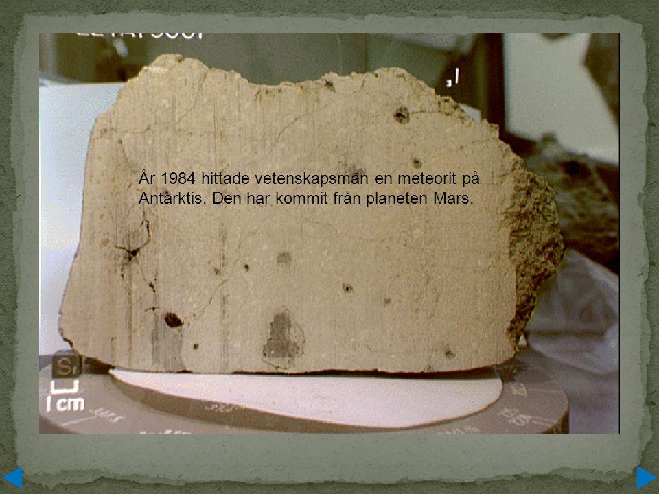År 1984 hittade vetenskapsmän en meteorit på Antarktis