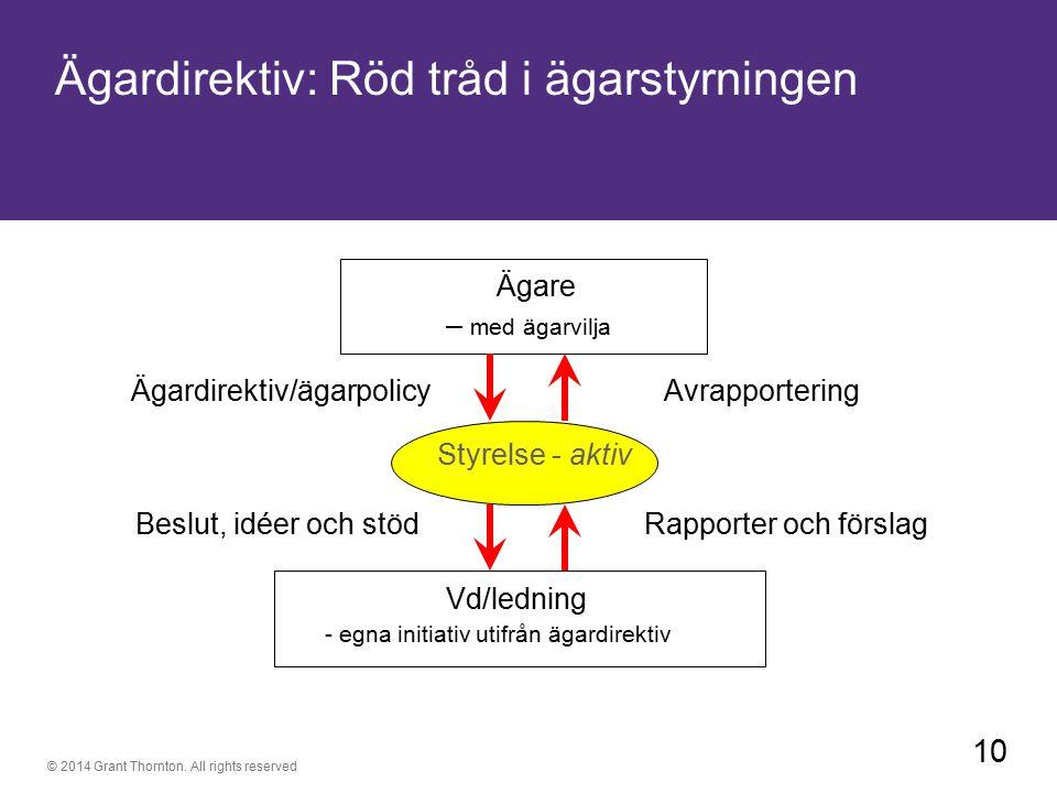 Ägardirektiv: Röd tråd i ägarstyrningen