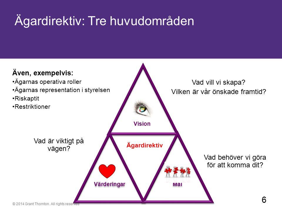 Ägardirektiv: Tre huvudområden