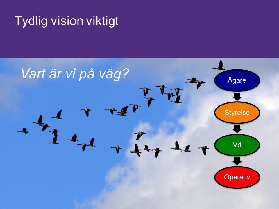 Tydlig vision viktigt Vart är vi på väg Ägare Styrelse Vd Operativ