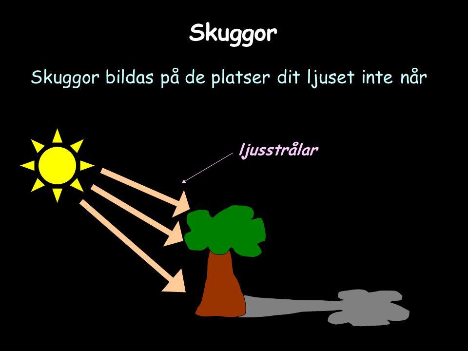 Skuggor Skuggor bildas på de platser dit ljuset inte når ljusstrålar