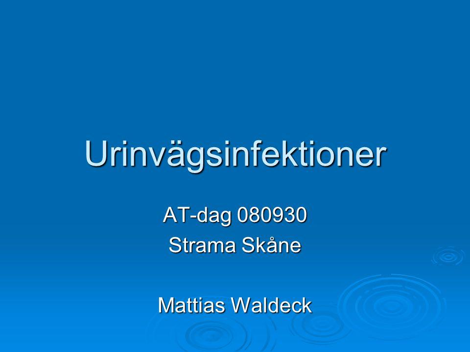 AT-dag 080930 Strama Skåne Mattias Waldeck