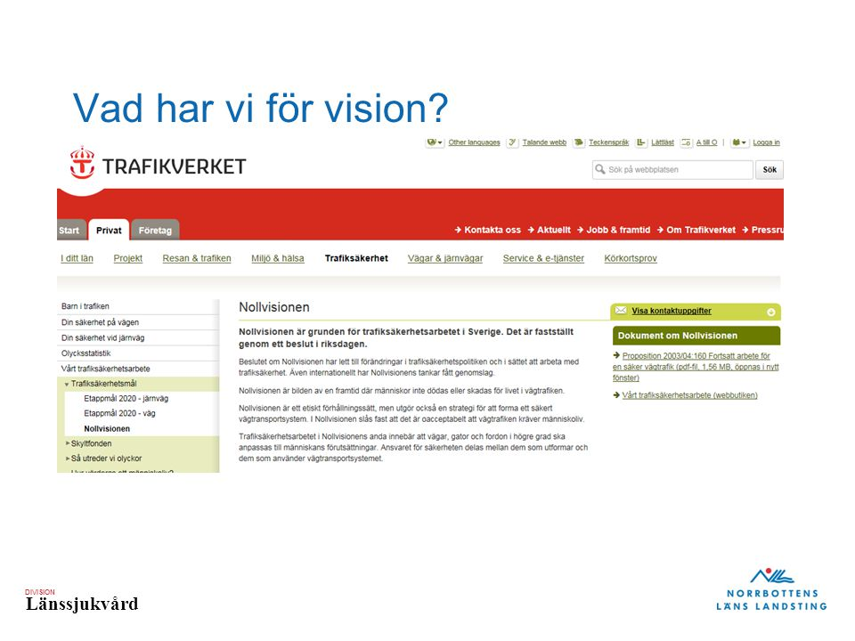 Vad har vi för vision