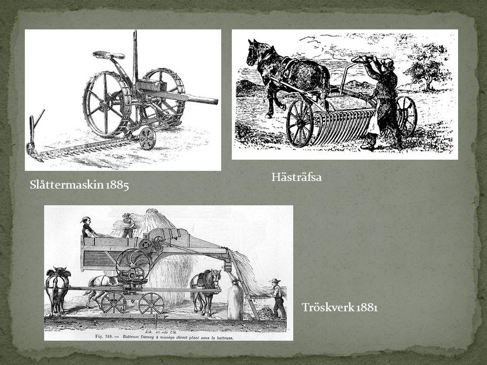 Hästräfsa Slåttermaskin 1885 Tröskverk 1881
