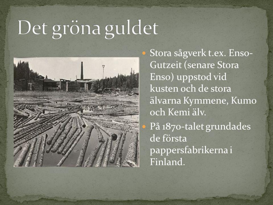 Det gröna guldet Stora sågverk t.ex. Enso- Gutzeit (senare Stora Enso) uppstod vid kusten och de stora älvarna Kymmene, Kumo och Kemi älv.