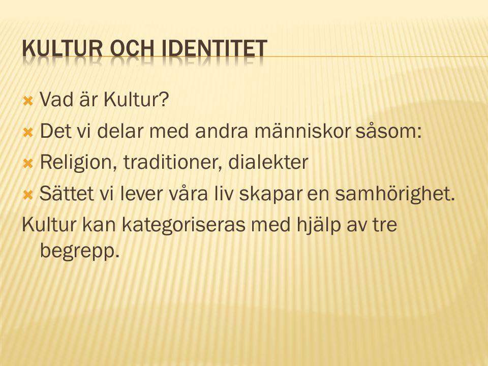 Kultur och Identitet Vad är Kultur
