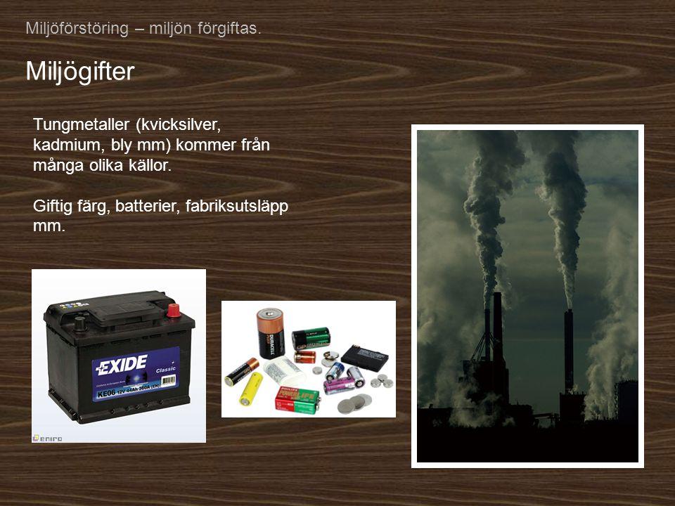 Miljögifter Miljöförstöring – miljön förgiftas.
