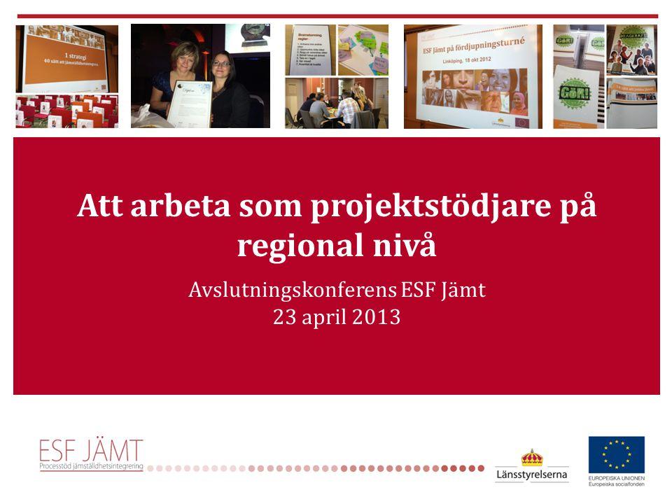 Att arbeta som projektstödjare på regional nivå