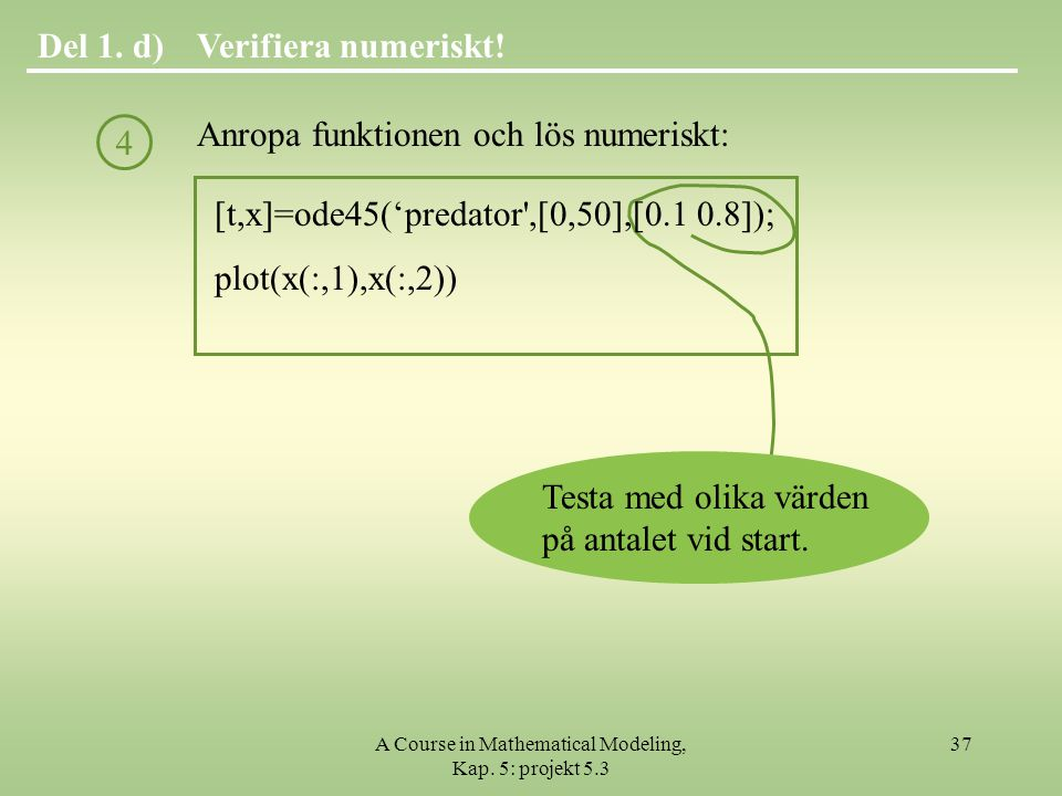 A Course in Mathematical Modeling, Kap. 5: projekt 5.3