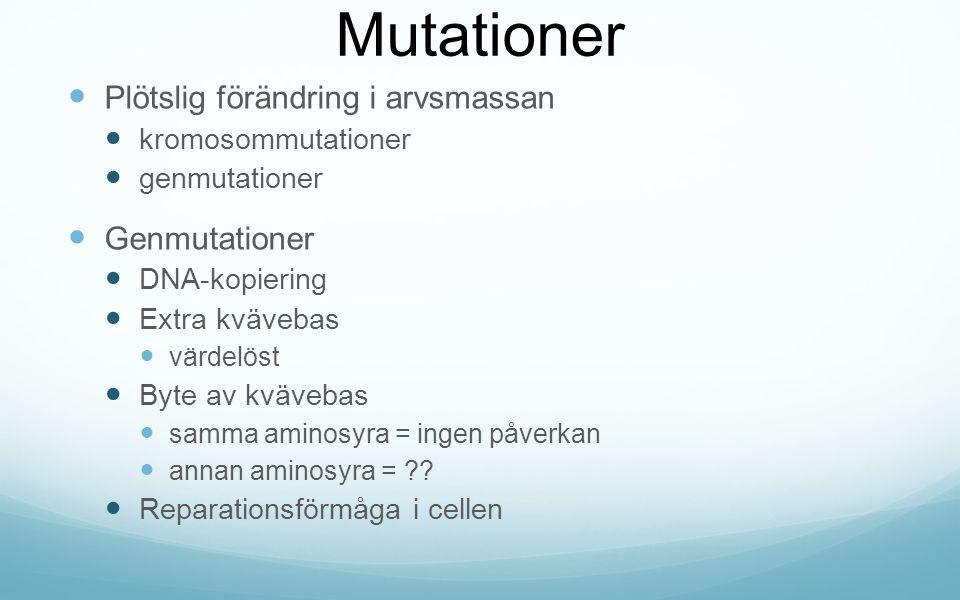 Mutationer Plötslig förändring i arvsmassan Genmutationer