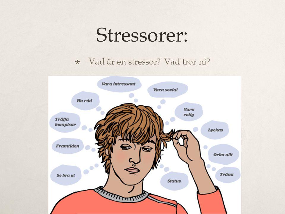 Vad är en stressor Vad tror ni