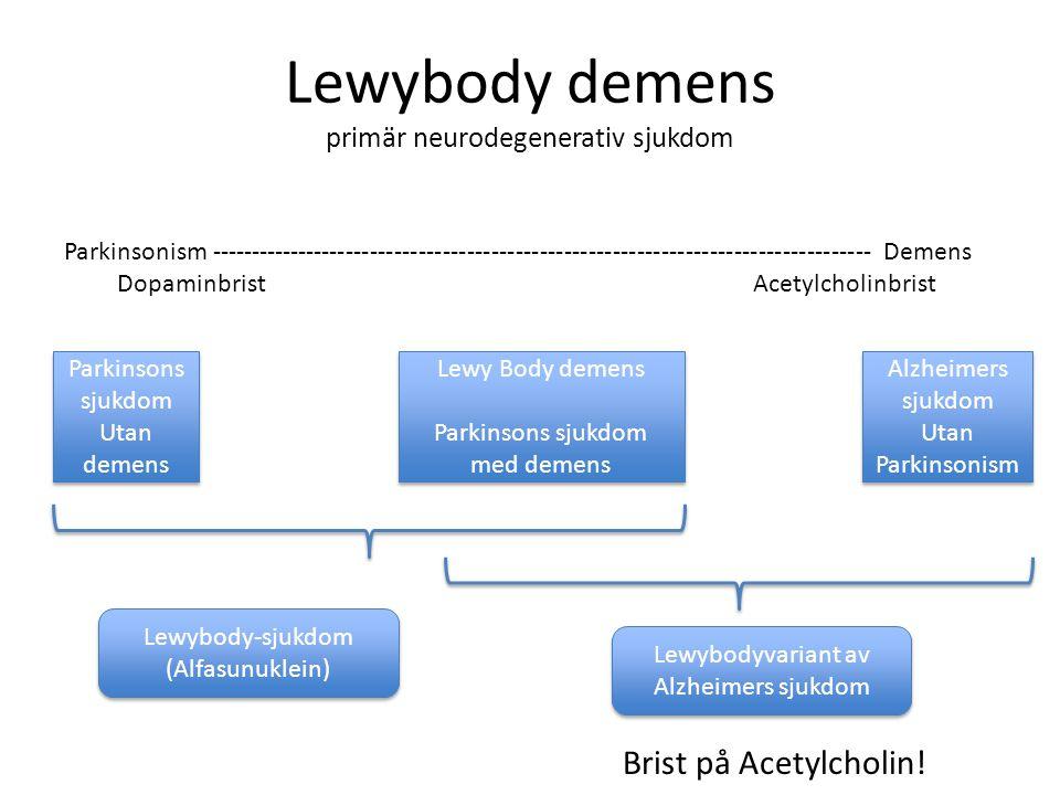 Lewybody demens primär neurodegenerativ sjukdom