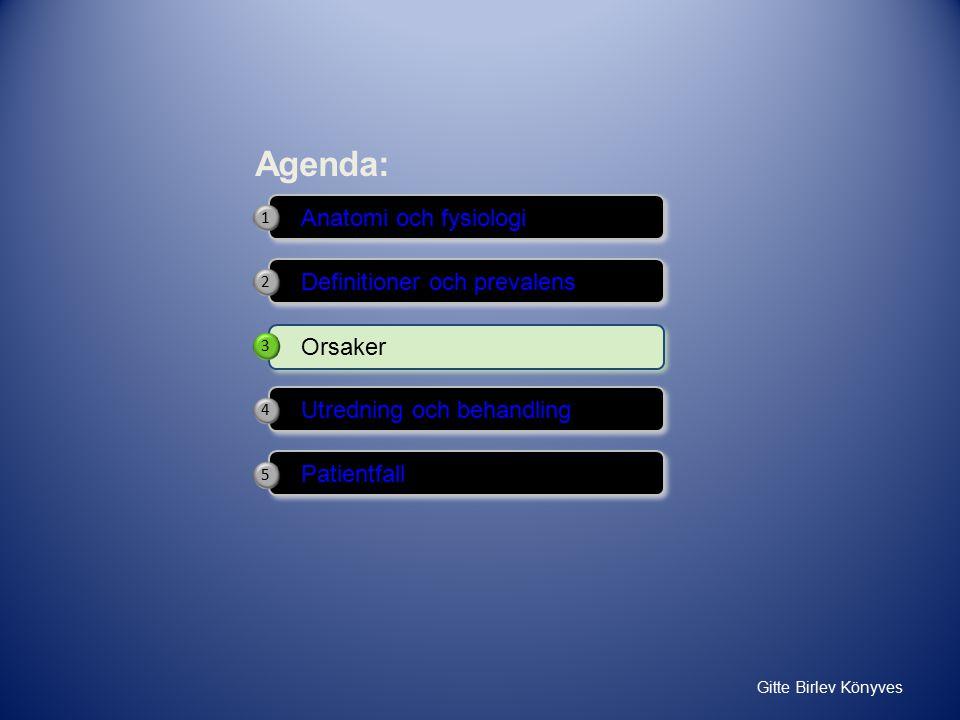 Agenda: Anatomi och fysiologi Definitioner och prevalens Orsaker