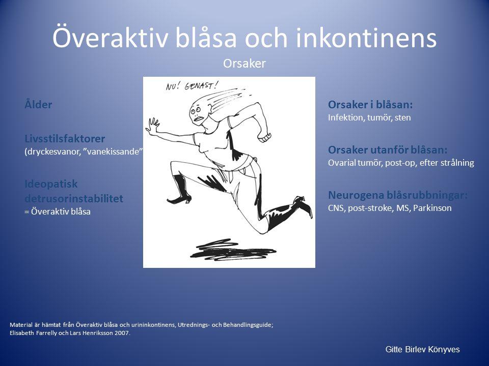 Överaktiv blåsa och inkontinens Orsaker