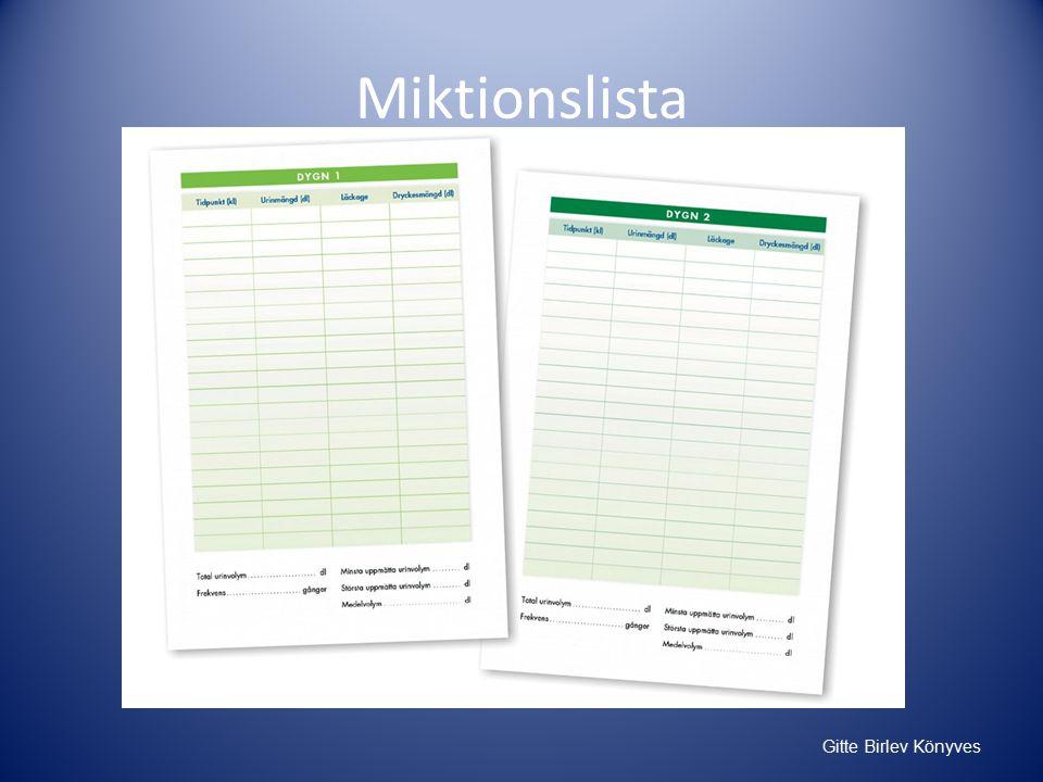 Miktionslista Gitte Birlev Könyves