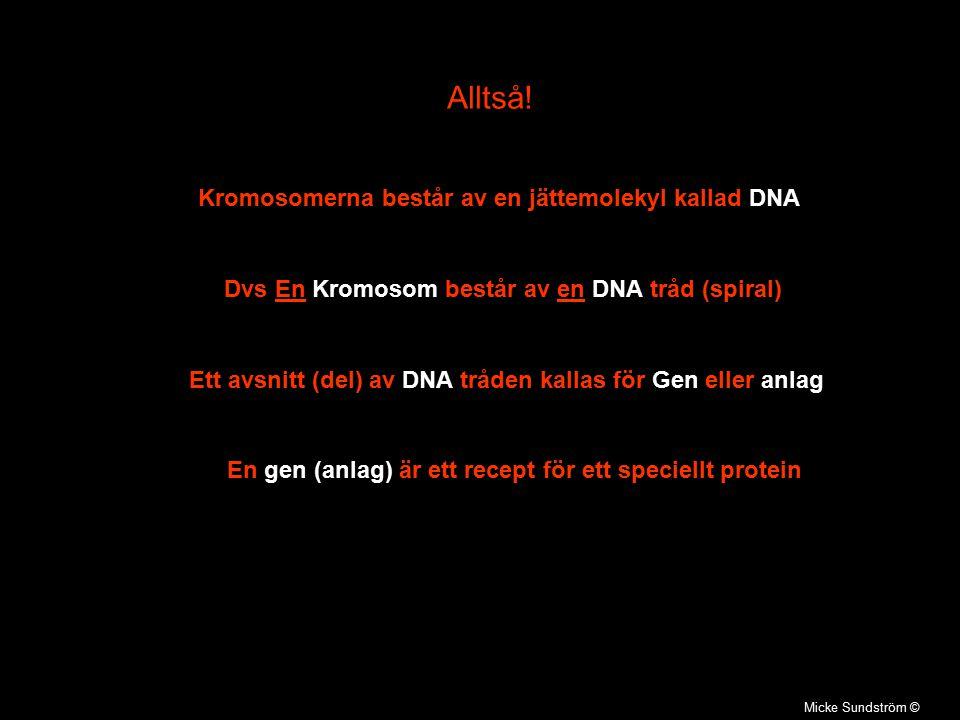 Alltså! Kromosomerna består av en jättemolekyl kallad DNA
