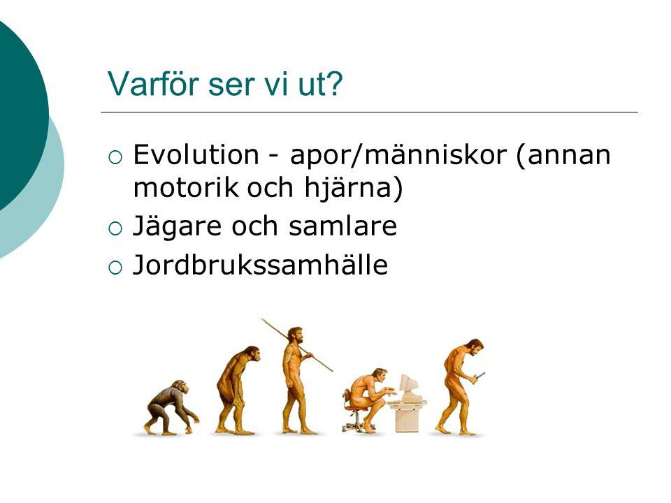 Varför ser vi ut. Evolution - apor/människor (annan motorik och hjärna) Jägare och samlare.