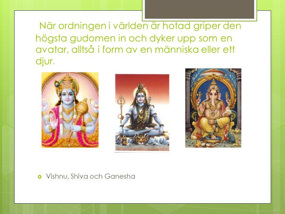 När ordningen i världen är hotad griper den högsta gudomen in och dyker upp som en avatar, alltså i form av en människa eller ett djur.