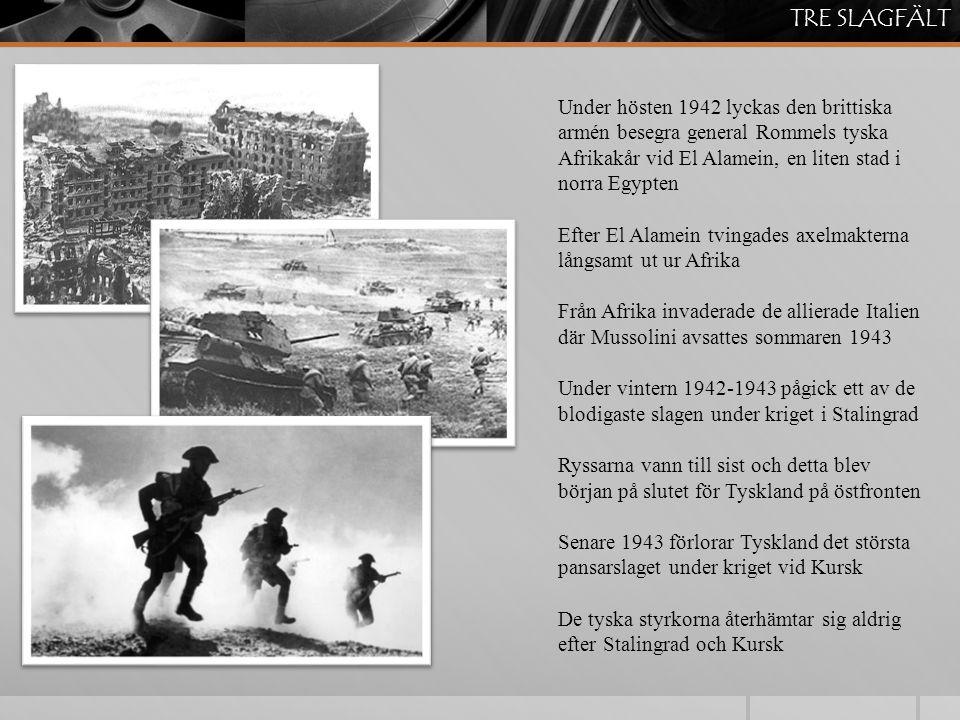 TRE SLAGFÄLT Under hösten 1942 lyckas den brittiska armén besegra general Rommels tyska Afrikakår vid El Alamein, en liten stad i norra Egypten.