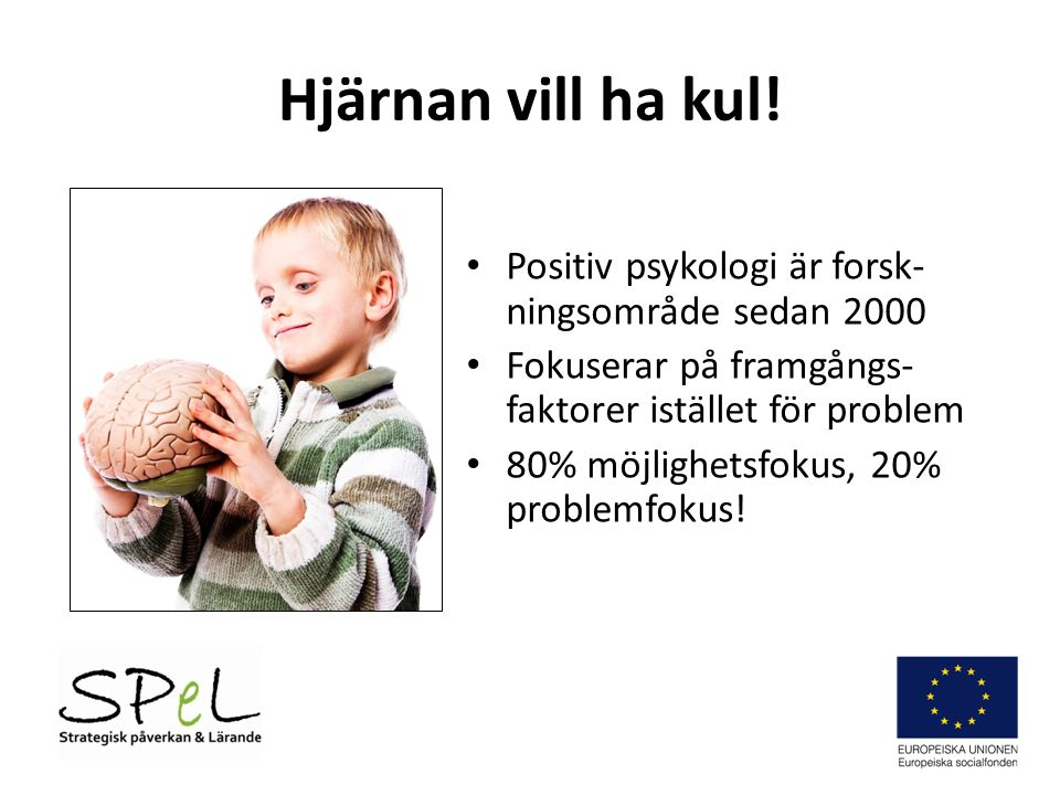 Hjärnan vill ha kul! Positiv psykologi är forsk-ningsområde sedan 2000