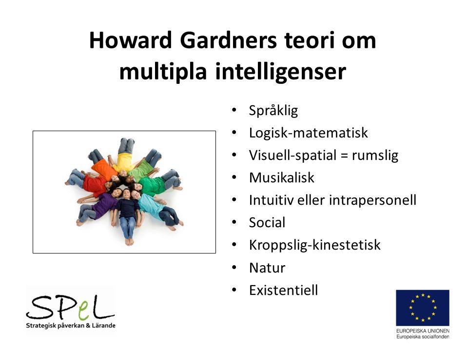 Howard Gardners teori om multipla intelligenser