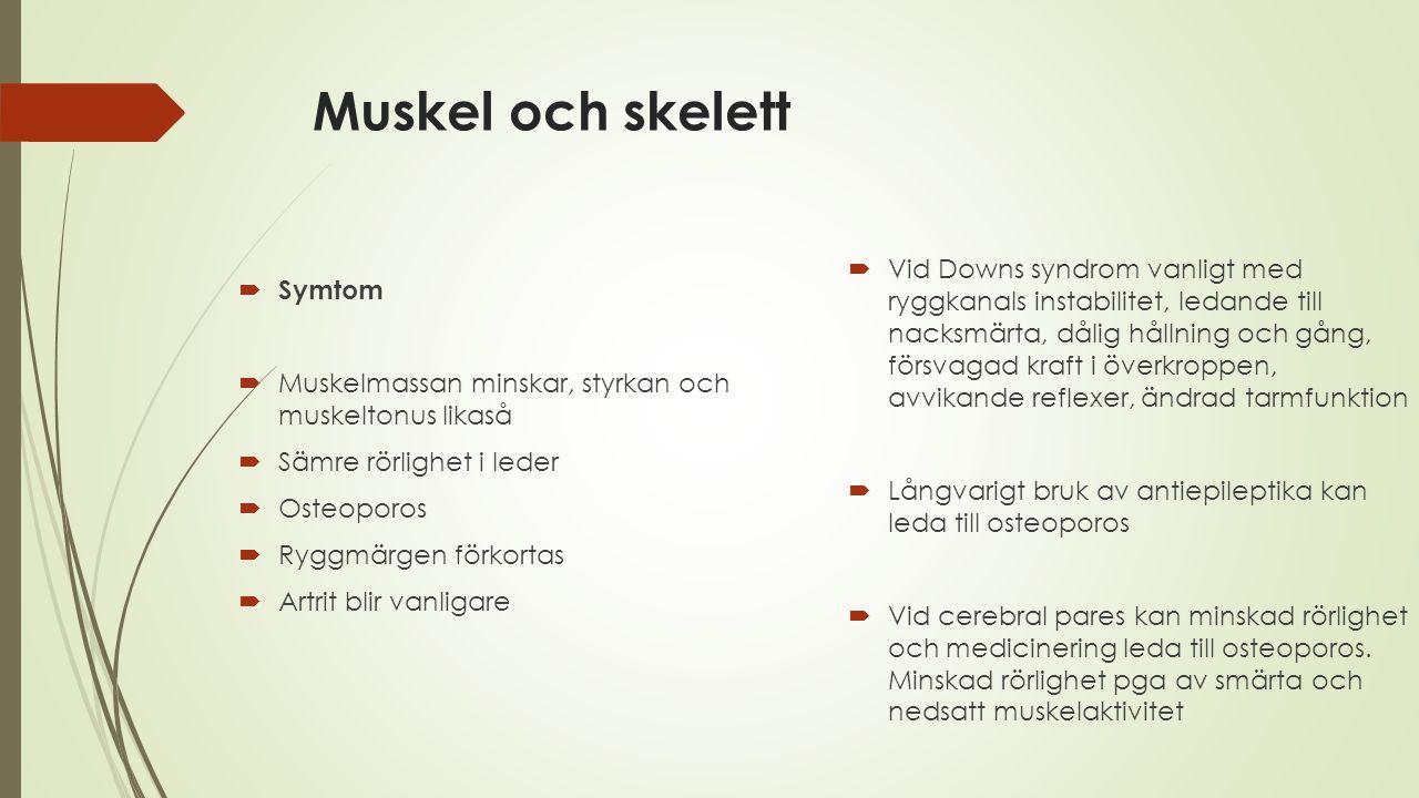 Muskel och skelett