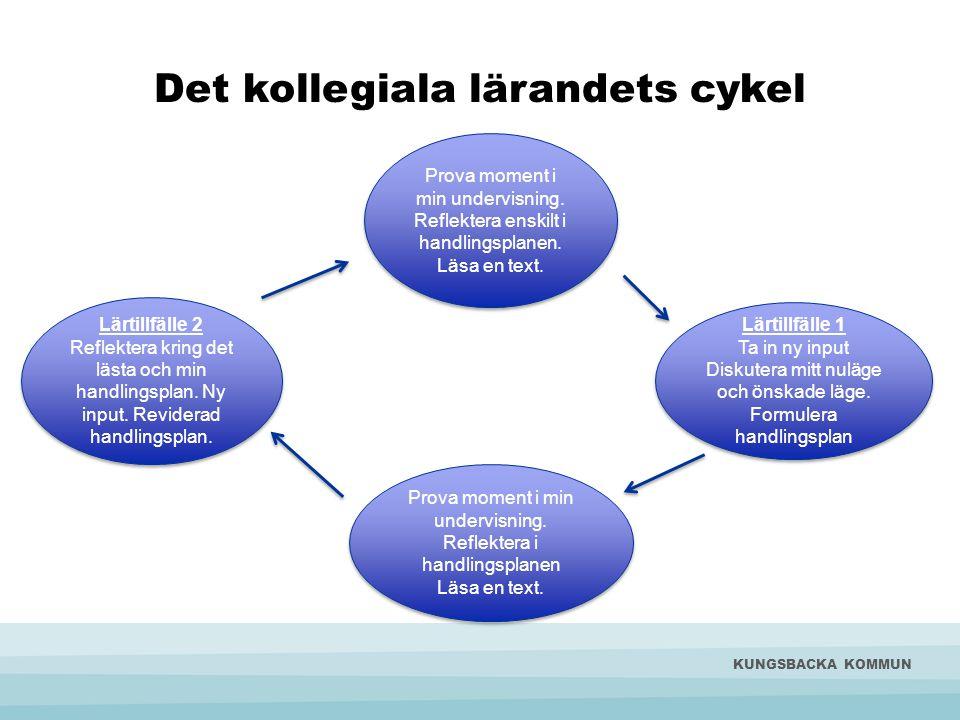 Principer för lärgruppernas arbete