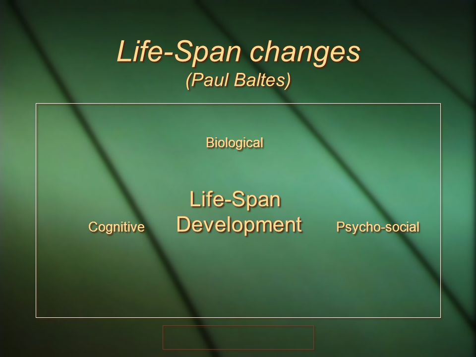 Life-Span changes (Paul Baltes)