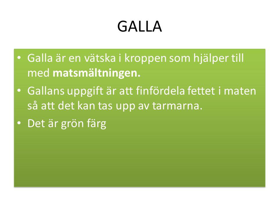 GALLA Galla är en vätska i kroppen som hjälper till med matsmältningen.