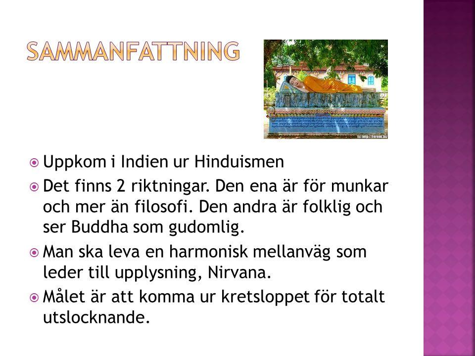 Sammanfattning Uppkom i Indien ur Hinduismen