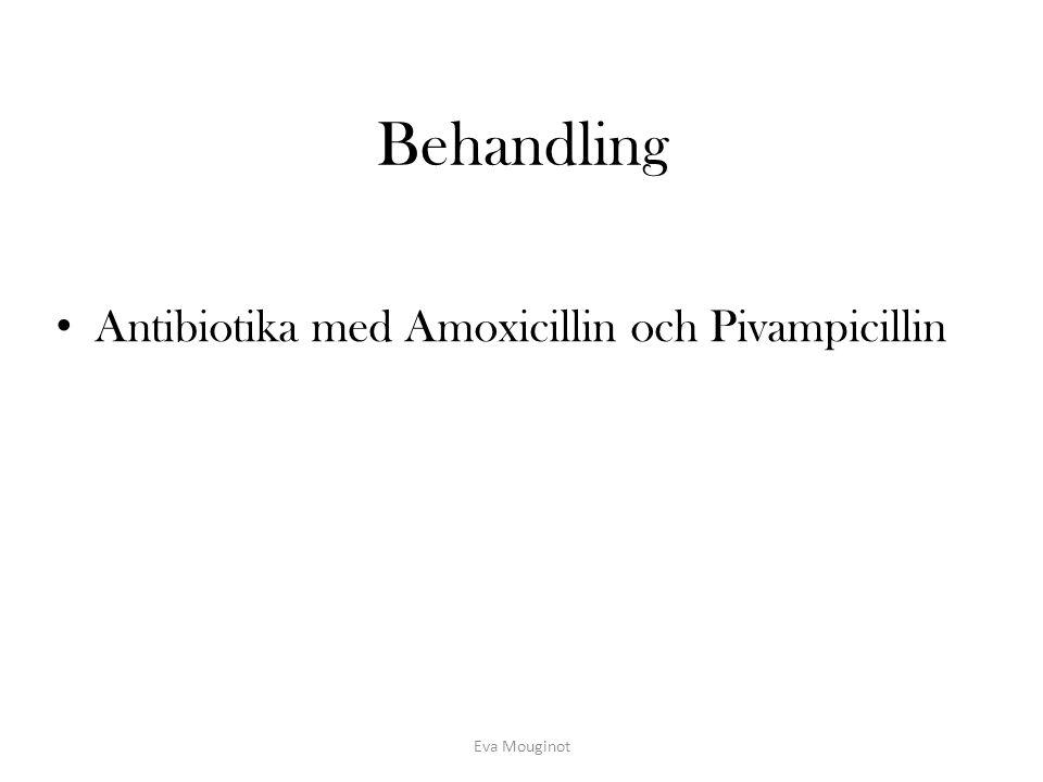 Behandling Antibiotika med Amoxicillin och Pivampicillin Eva Mouginot