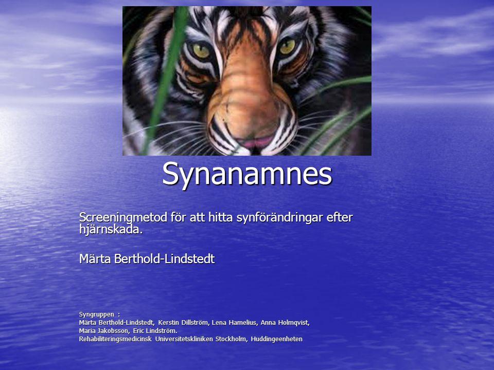 Synanamnes Screeningmetod för att hitta synförändringar efter hjärnskada. Märta Berthold-Lindstedt.