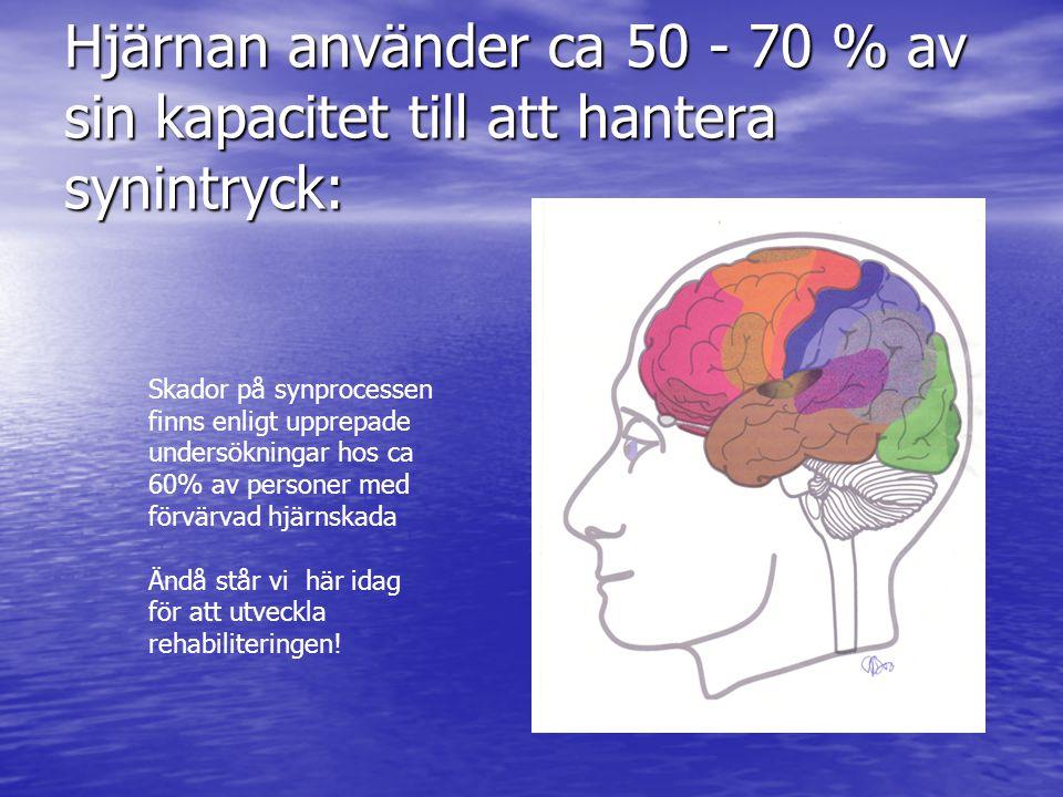 Hjärnan använder ca 50 - 70 % av sin kapacitet till att hantera synintryck: